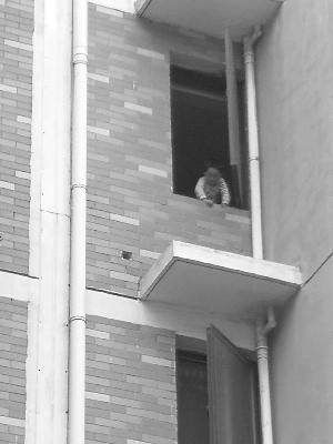 孩子就这么趴在没护栏的窗边 警方供图