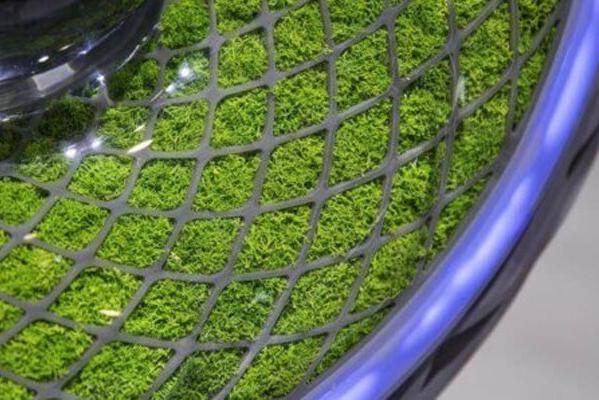 化身移动的大型盆栽 未来汽车轮胎长这样?