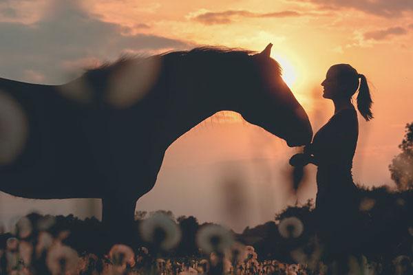 人与马的唯美肖像 享受融入大自然的唯美