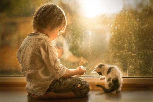唯美清新的儿童摄影 儿童和猫咪的温柔相处