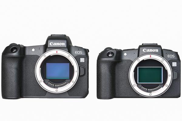 佳能两款全幅微单 EOS R与EOS RP实拍对比图赏