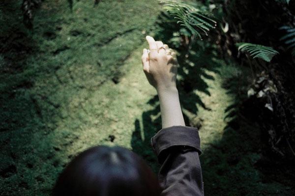 会呼吸的轻柔光影 唯美安静的瞬间定格