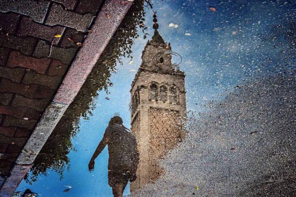 水面倒影中的平行世界 巧妙观察发现别样街头