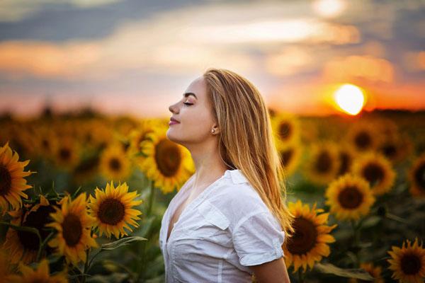 夕阳下的柔美少女 向日葵花海中的梦幻时刻