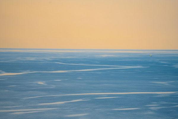 平凡中的美丽 大胆的色彩创建不一样的平凡