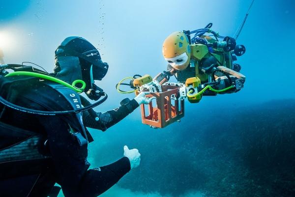 鱼群傻傻把它当同类? 机器鱼未来玩法大揭秘