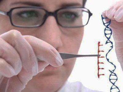 改造遗传基因?基因编辑技术引争议