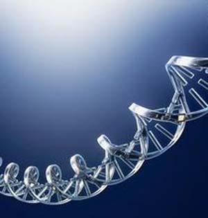 新创意!祖传DNA项链充满科技感