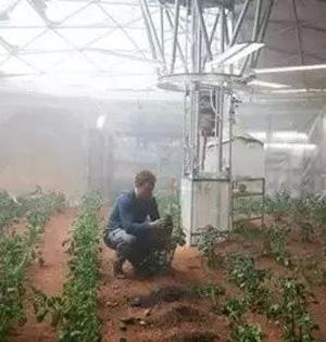 NASA将秘鲁模拟火星种土豆