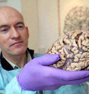 人脑功能随季节变化出现差异