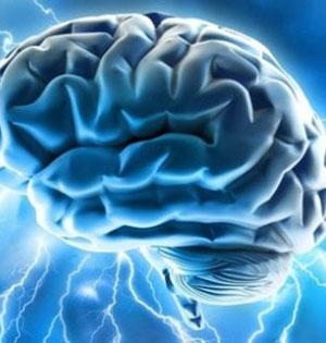 """大脑""""高潮"""":源自对外部刺激反应"""