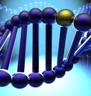 最小基因组合成:向生命之谜迈进