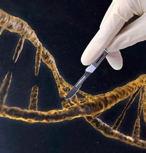 基因编辑运行机制有望消灭癌症