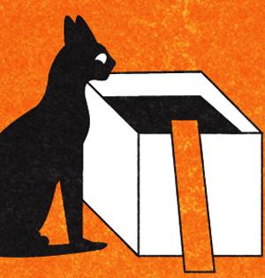 薛定谔猫处两地:量子双模式猫态