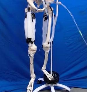 机器人安装人造肌肉如同终结者