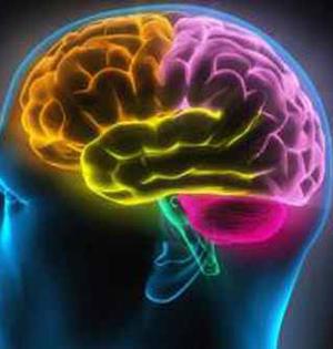 首个人造中脑或有助研究帕金森症
