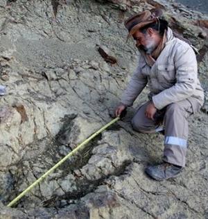 史前巨型肉食性恐龙大脚印现身