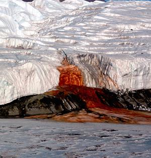 南极有个血瀑布,这是怎么回事?