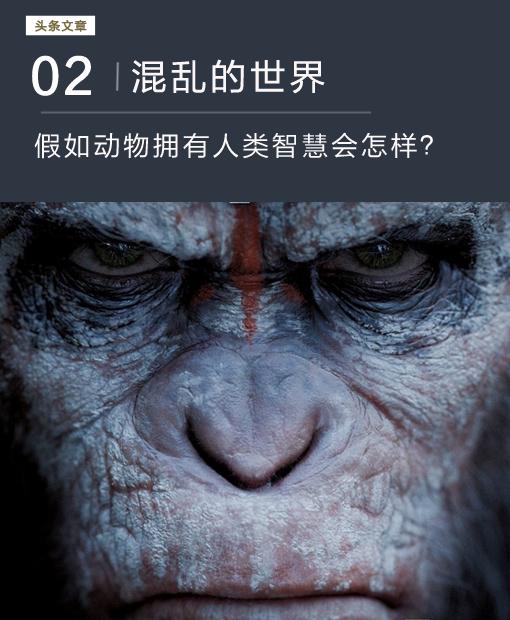 假如动物拥有了人类的智慧会怎样:世界混乱物种互相残杀