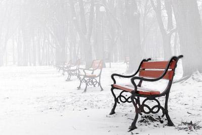 5招拍摄纯洁浪漫的雪景照片