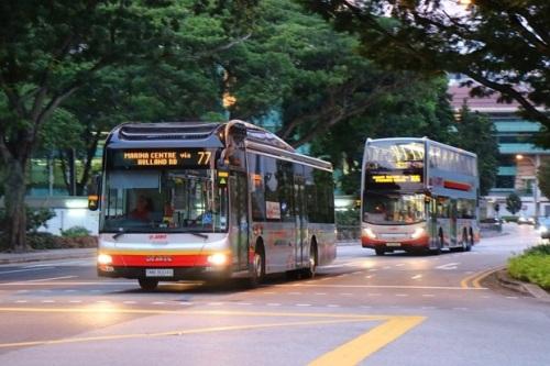 新加坡智能公车站彷佛大型盆栽 让等候变有趣