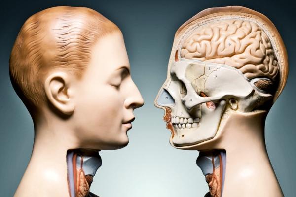 """这项AR技术将你活生生地""""解剖""""给别人看"""