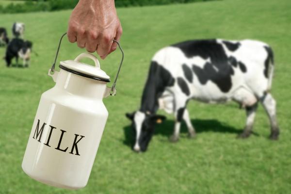 聪明的包装设计什么样?就像这款牛奶包装盒