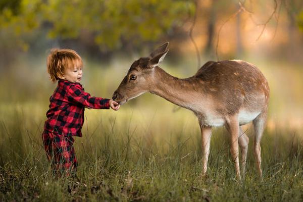 农场中的原生态夏日 儿童与动物的和谐相处