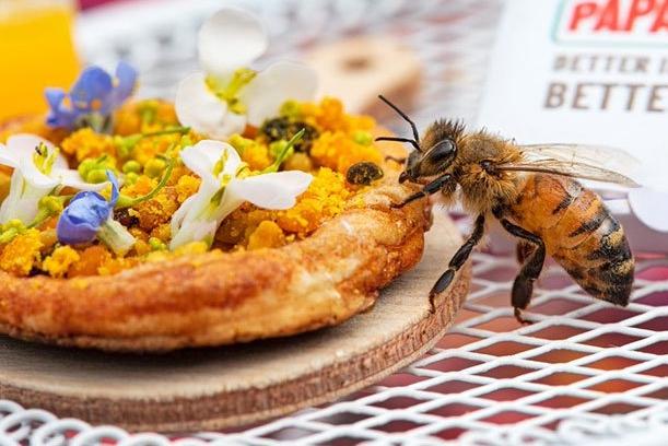 蜜蜂专属鲜花迷你披萨