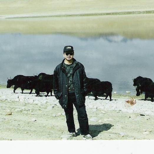 骑行牦牛背