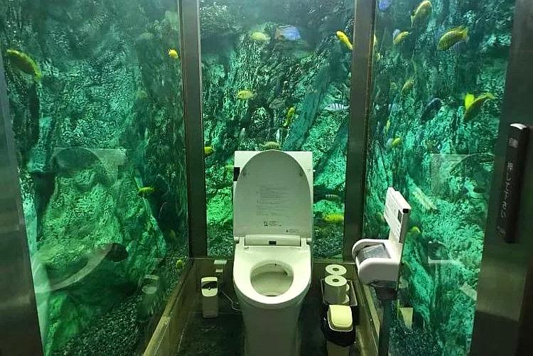 日本有个全透明的厕所 而且只接待女客