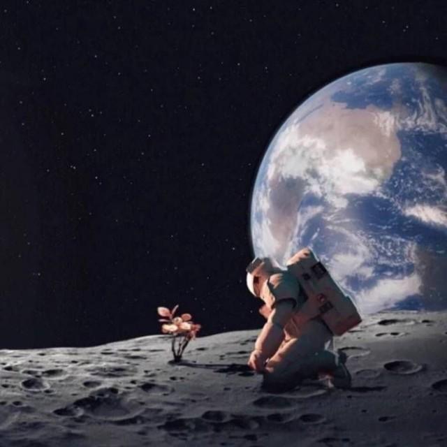 月球密探阿波罗