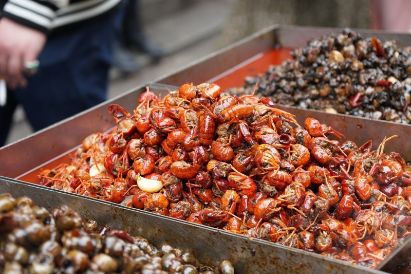 你吃的小龙虾可能是洗衣机洗出来的