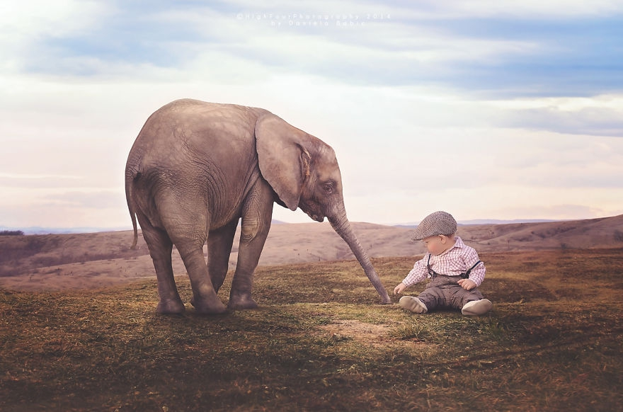 动物,其实每个小朋友都希望能够近距离的接触平日里看不到的动物,但