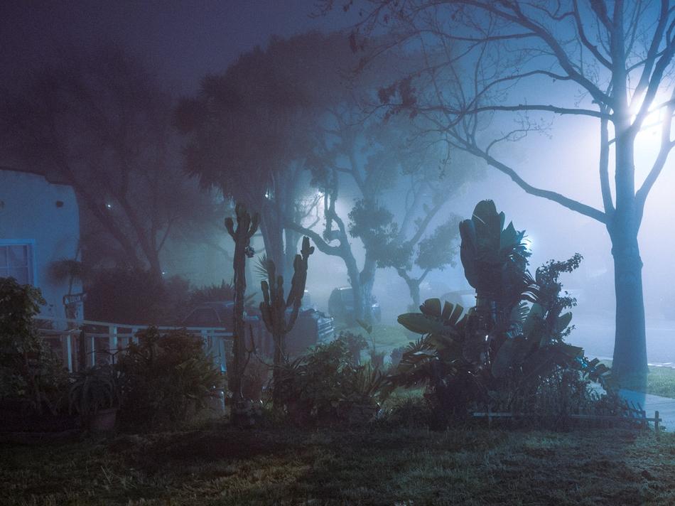 夜晚总有独特的魅力,迷幻的城市光影更是烘托着城市的喧嚣后的宁静图片