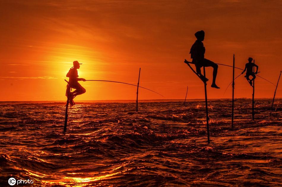 斯里兰卡迷人光影:高跷渔夫,世界上最牛的钓鱼方式
