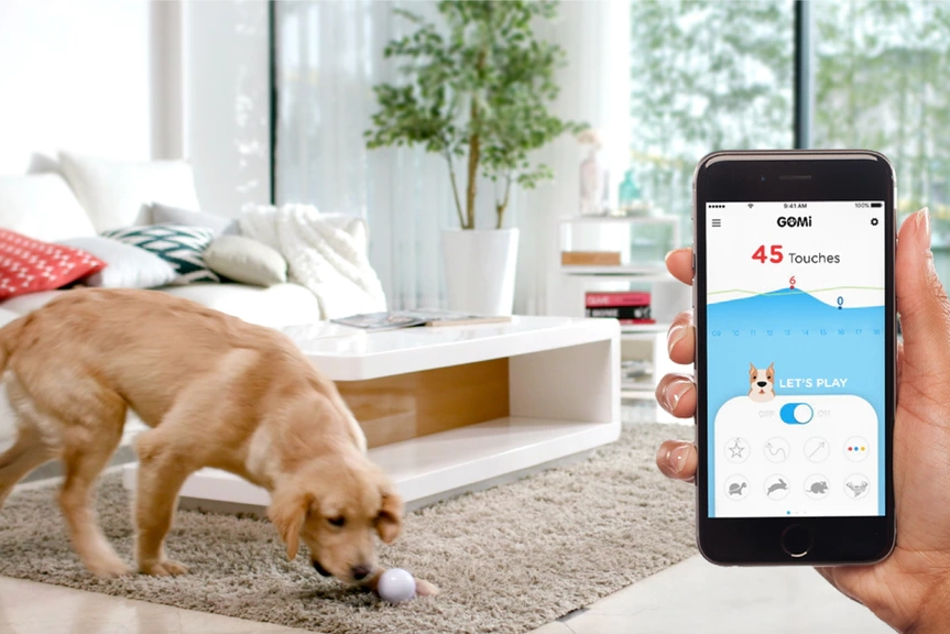 GomiBall:放家里不用管的全自动逗猫狗玩具