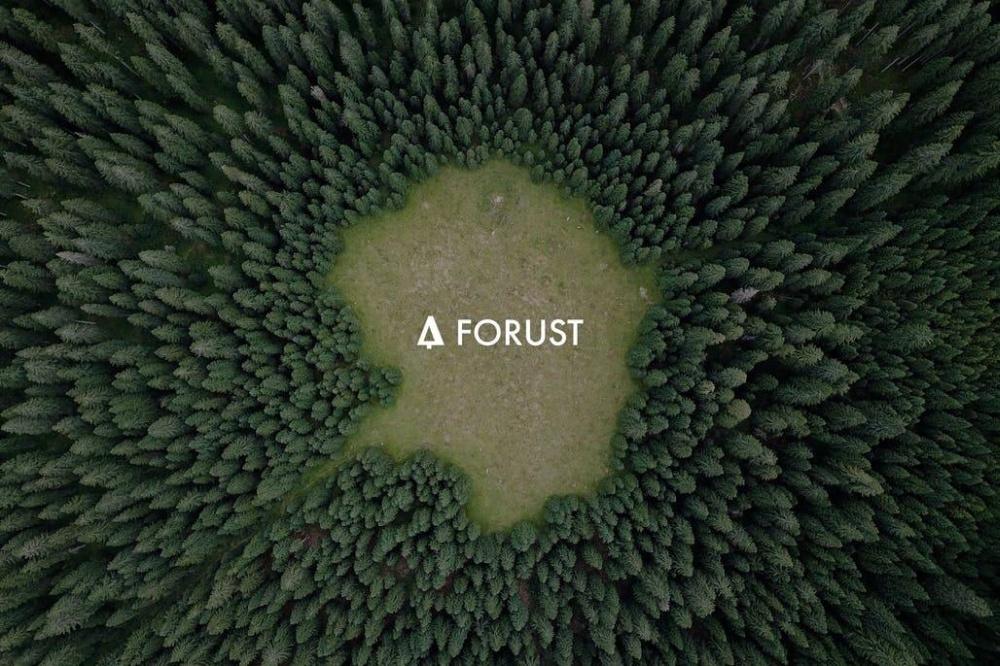 万物皆可造的3D打印 这次盯上了森林