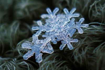 分析大师微距作品 学拍晶莹剔透的雪花