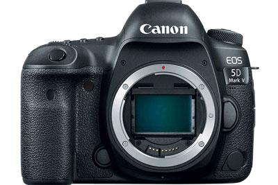 佳能5D Mark Ⅴ、EOS R Mark Ⅱ相机正处在预备阶段