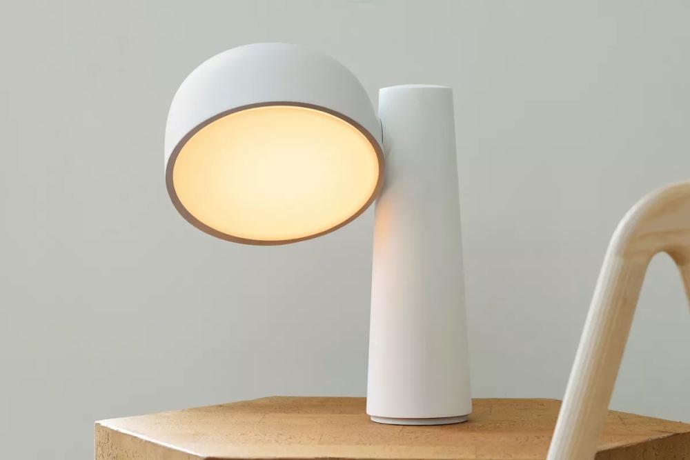 绿色环保新方案 外国公司研制出用玉米制作的台灯