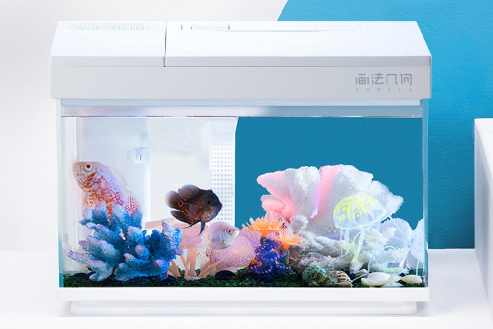 小米上架自动喂食鱼缸:告别三天换水 七天换鱼
