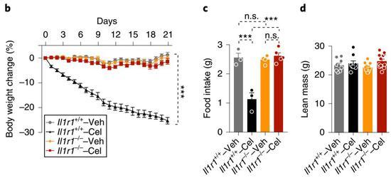 白介素1受体1(IL1R1)对雷公藤红素的作用至关重要