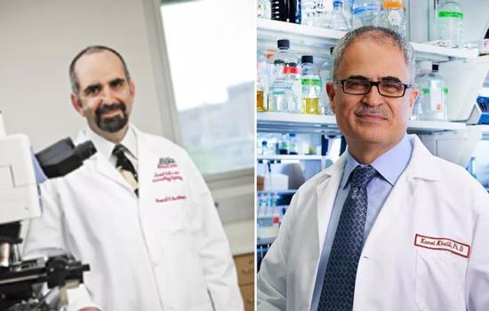 ▲该研究的两位通讯作者Howard Gendelman教授(左)和Kamel Khalili教授(右)(图片来源:研究机构官网)