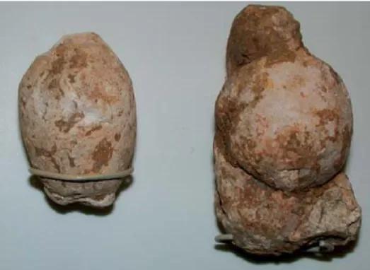 鬣狗粪便化石,发现于英格兰北约克郡的洞穴,保存在牛津大学博物馆。