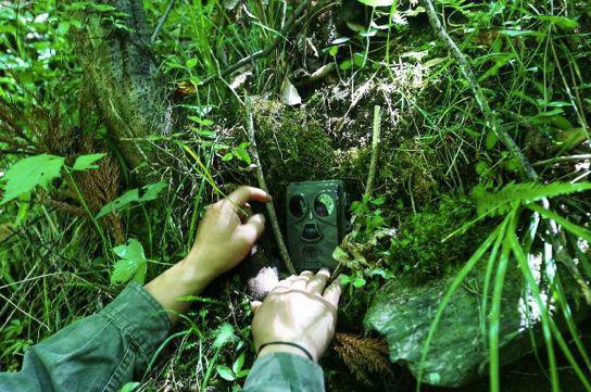 红外相机监测野生动物数量,也监督非法盗猎行为。来源:被访者供图