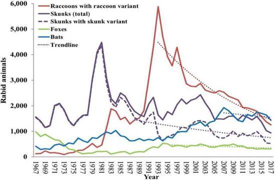 自1995年开始投放口服狂犬病疫苗后,美国野生动物狂犬病上报案例明显持续下降。(图源:AVMA Journals)