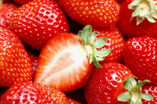 用牛奶浇灌草莓,草莓会有牛奶味吗?
