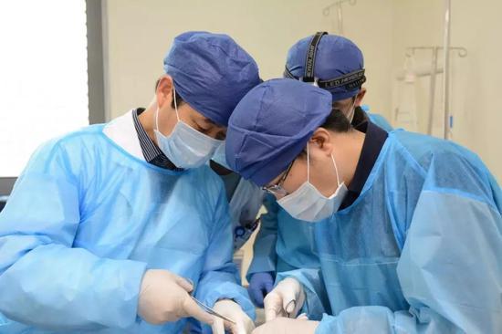 以右眼为例,医生先从患者的右颌部提取了一小块颌下腺。