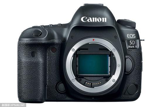 佳能5D Mark Ⅴ、EOS R Mark Ⅱ相机正处在准备阶段